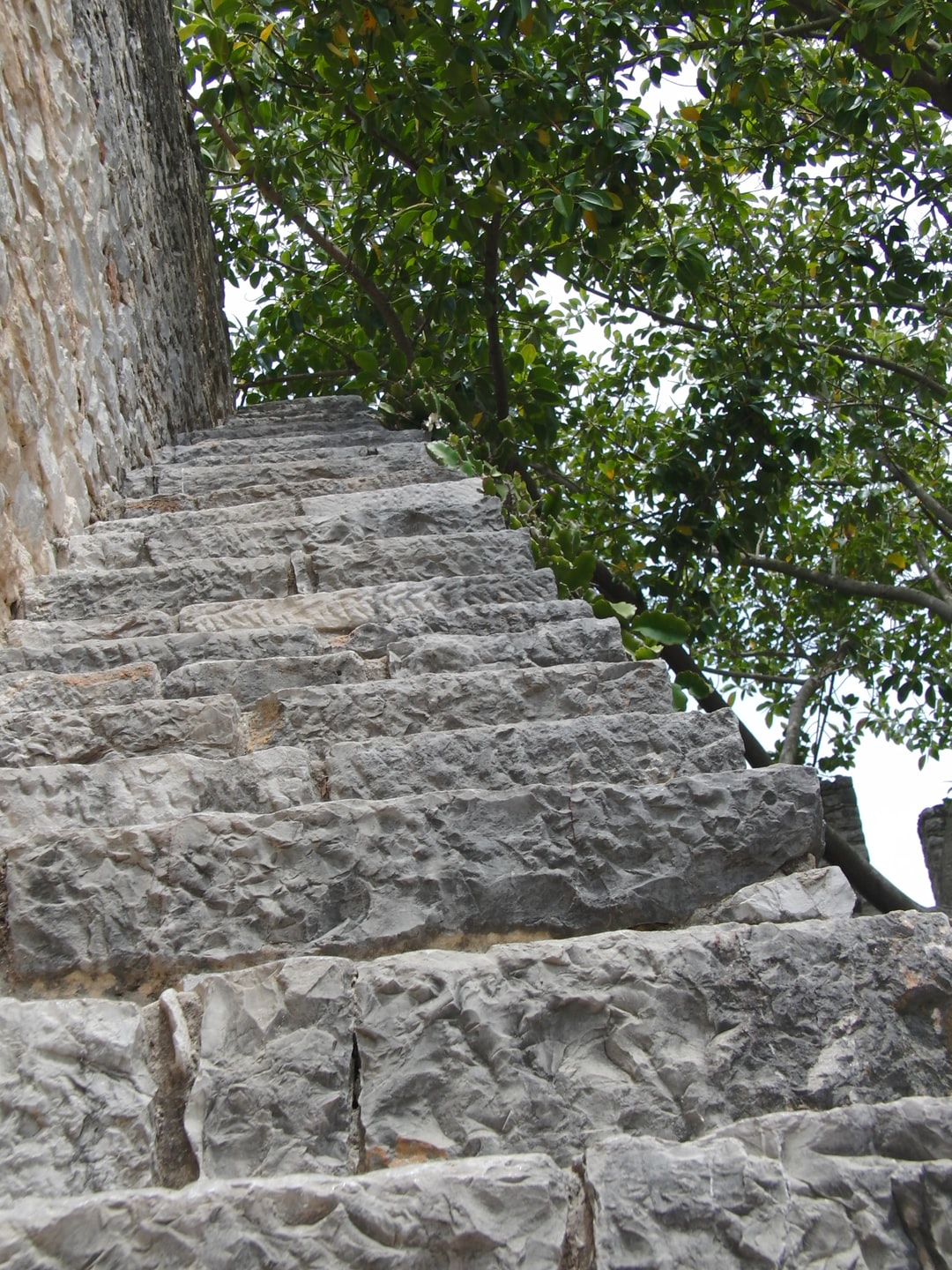 Stone Stepway to the Trees
