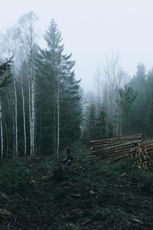 man standing beside wooden slag during daytime