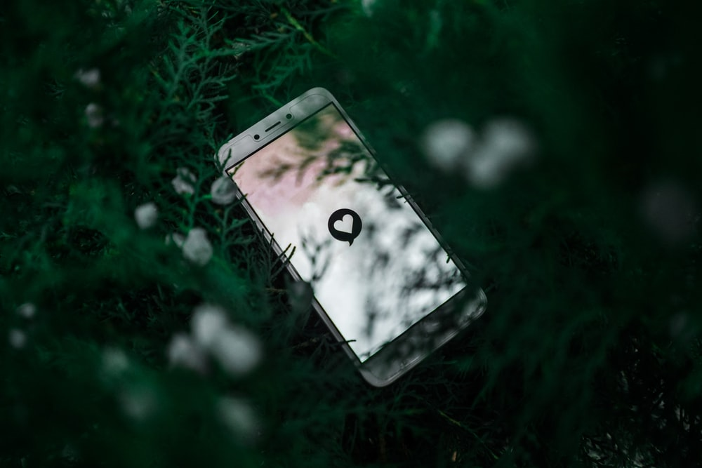 white Android smartphone near green plant