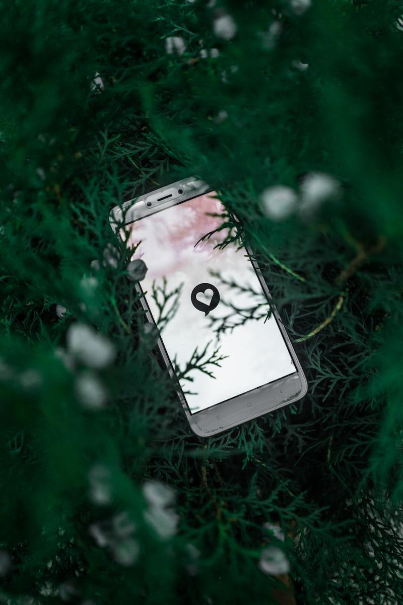 草むらに置かれた携帯電話