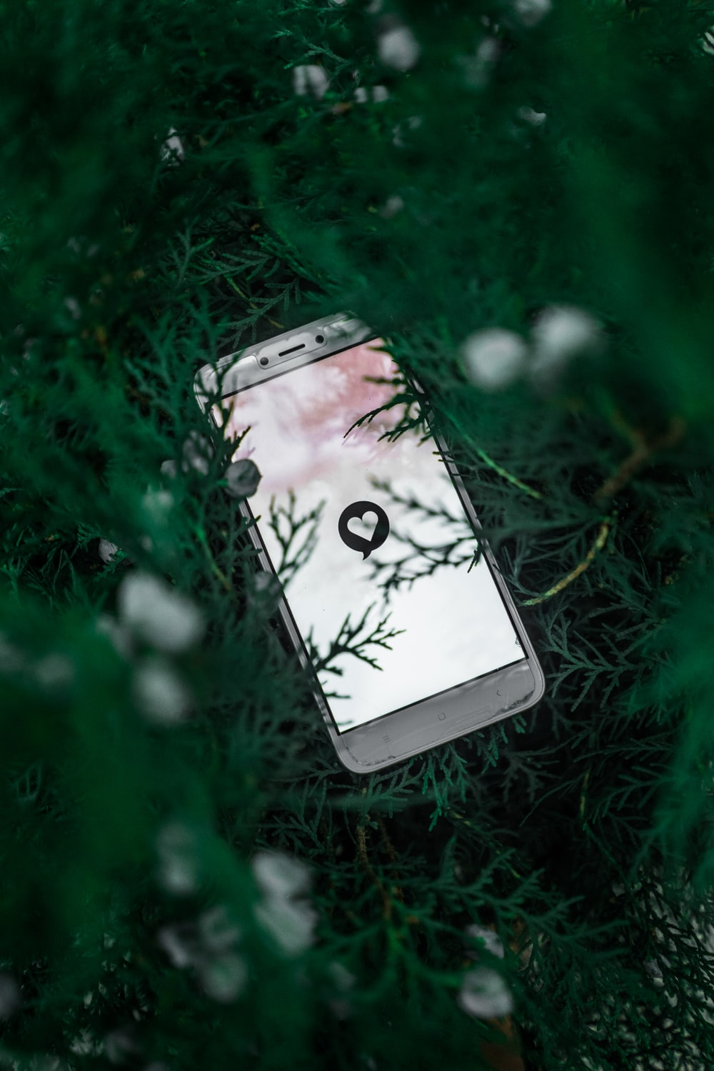 white smartphone on green grass