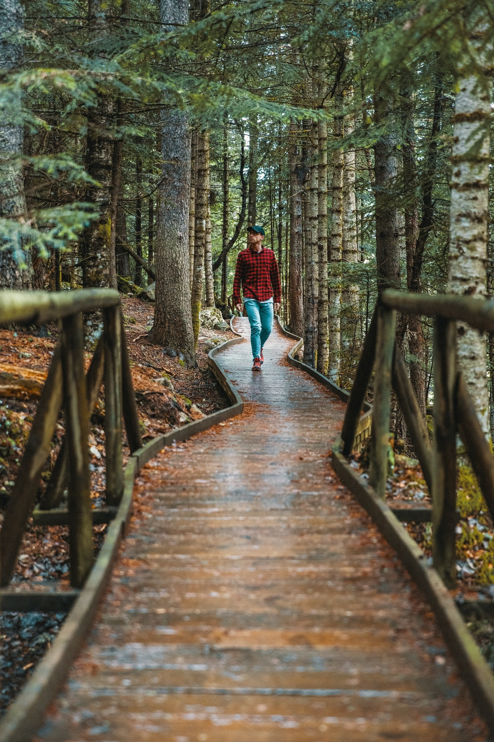 person in red long-sleeved shirt walking at pathway in the forest