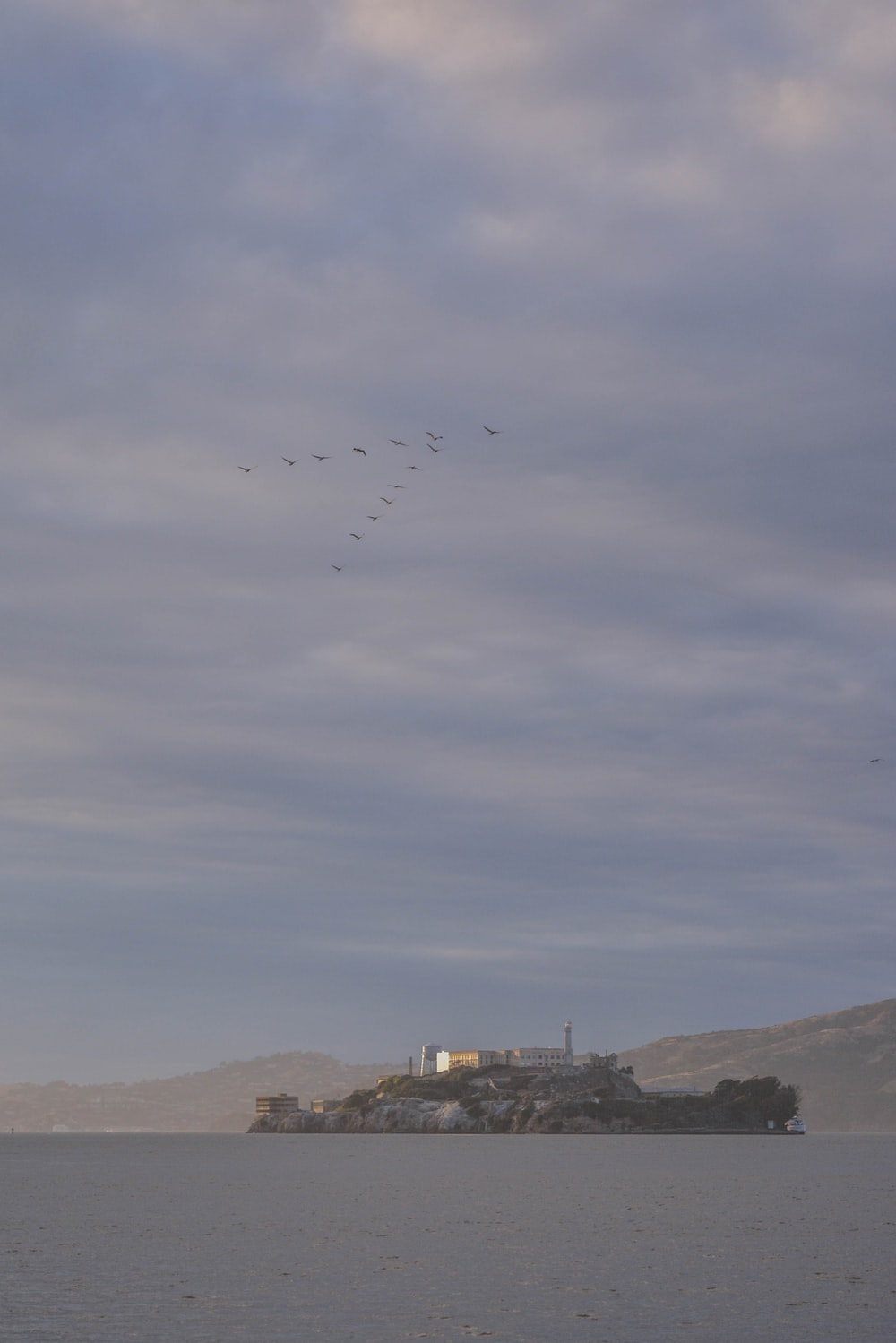 birds flying on v formation over Alcatraz