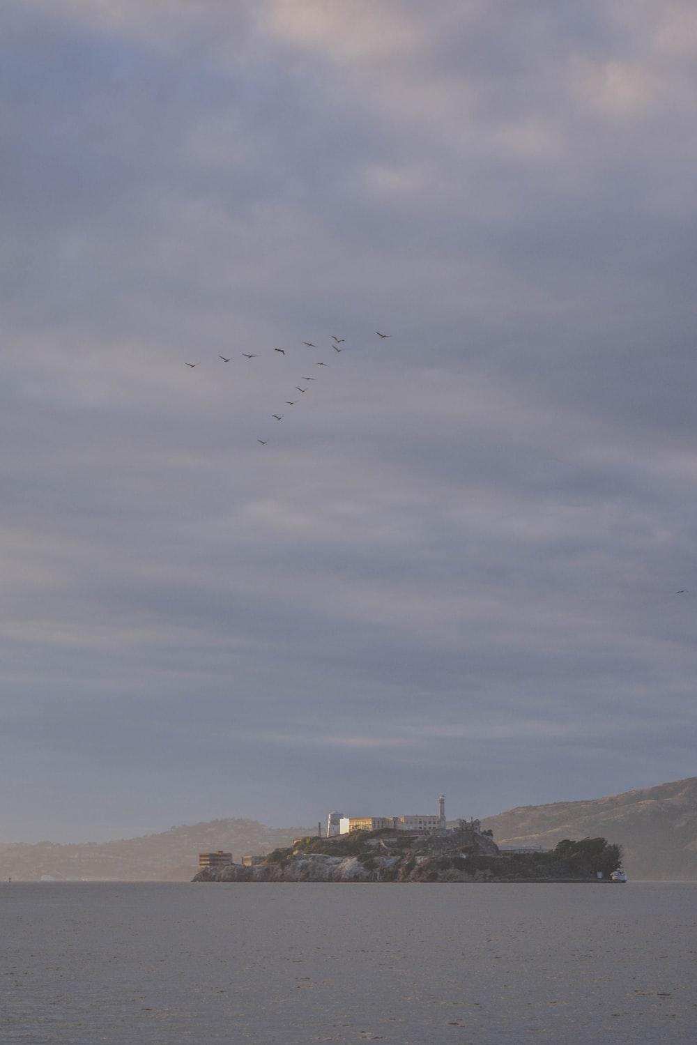 birds flying on v formation over Alcatraz