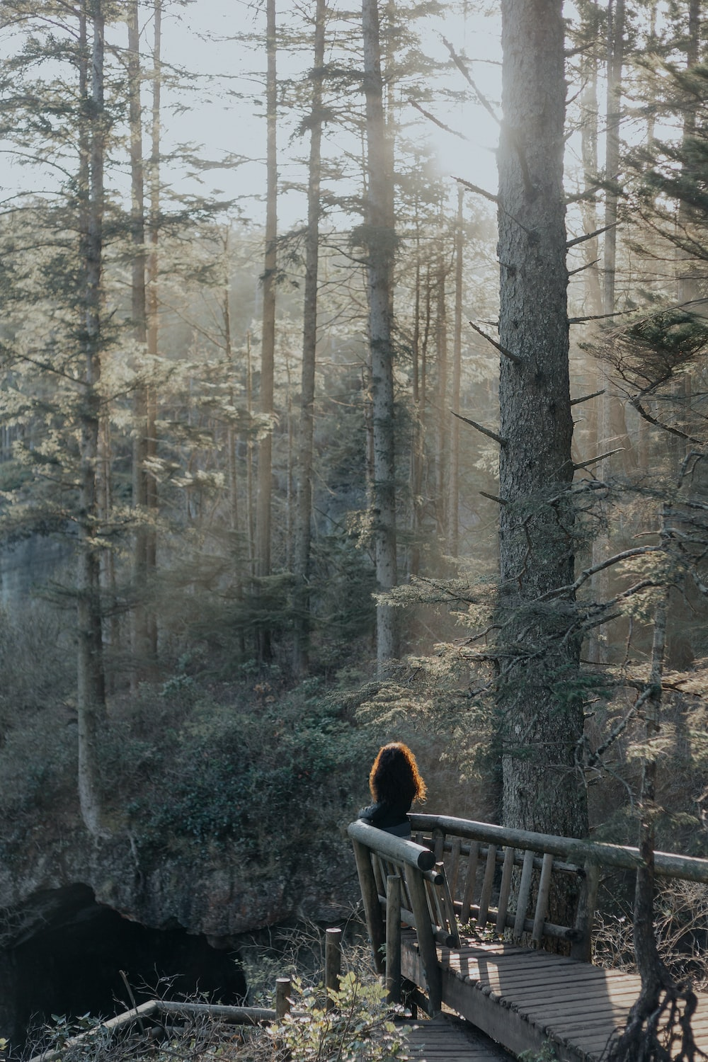 person standing near brown wooden railings in the forest