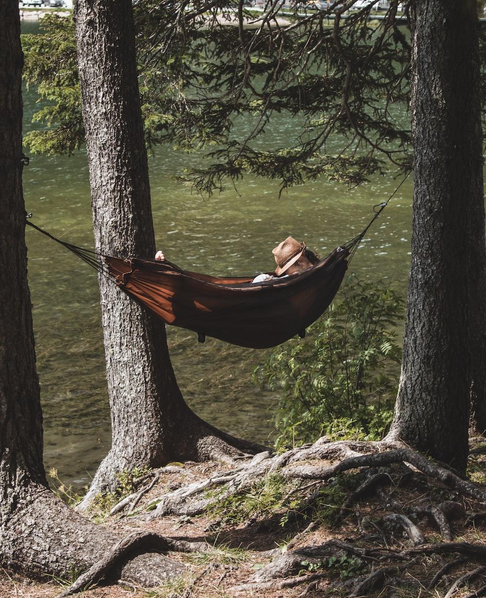 person on brown hammock under tree