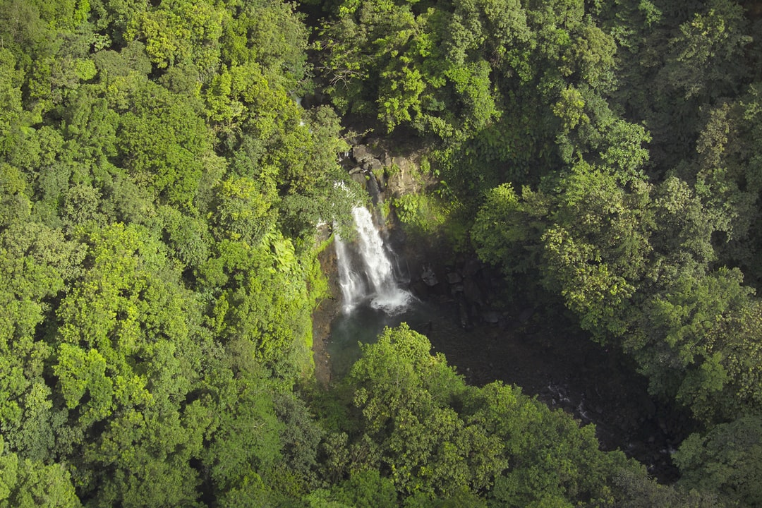 Waterfalls at Basse-Terre (Guadeloupe - French W.I)