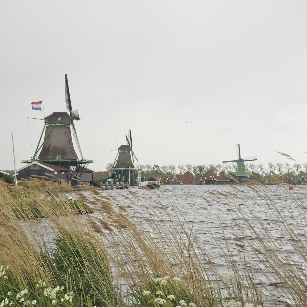view of houses with three windmills