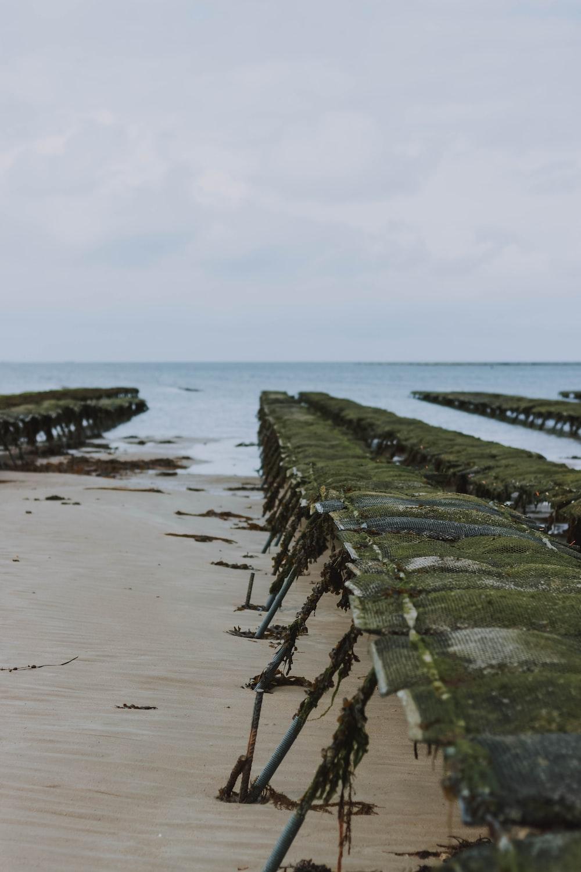 beach dock viewing blue sea