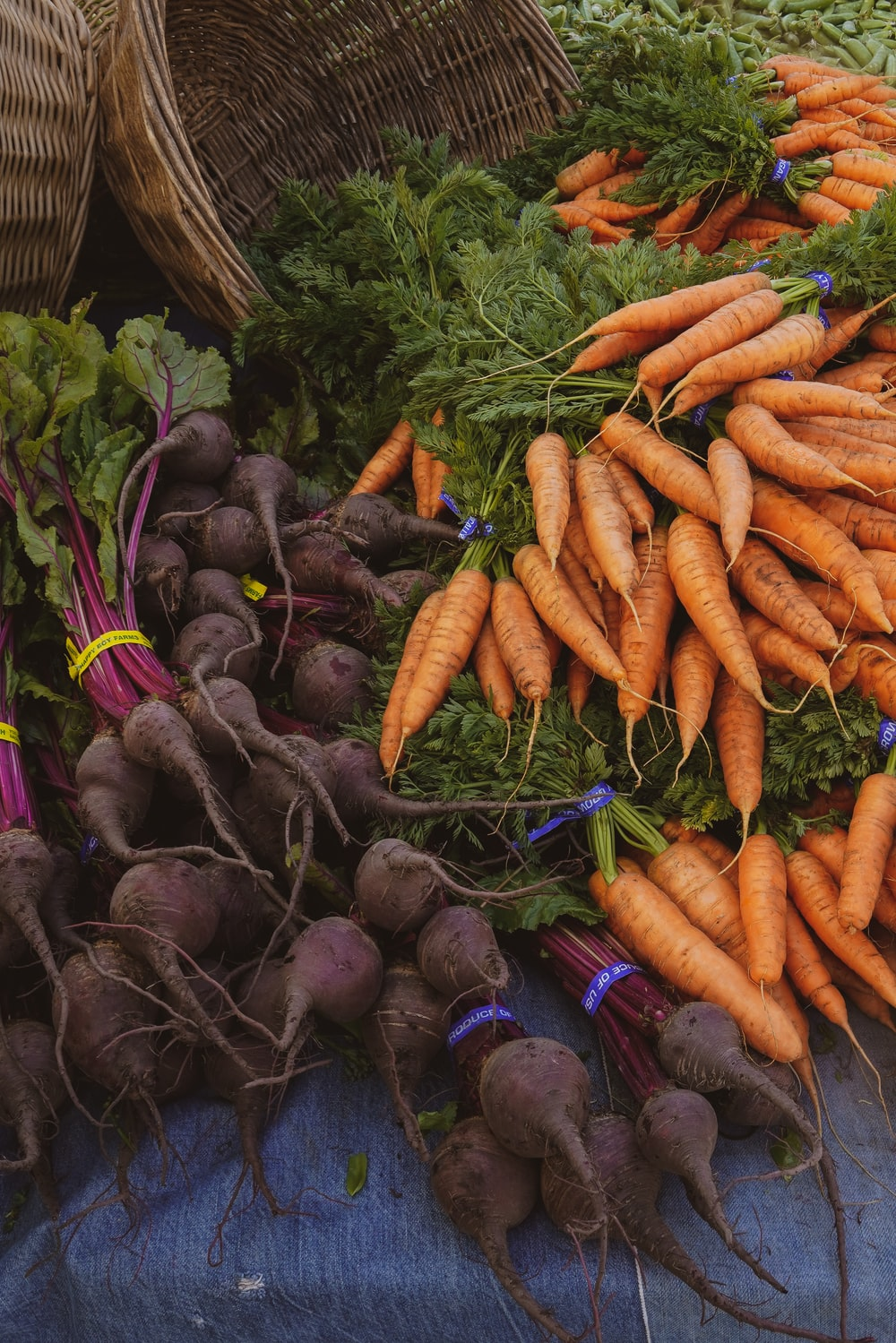 orange carrots lot