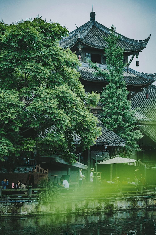 body of water near pagoda and trees