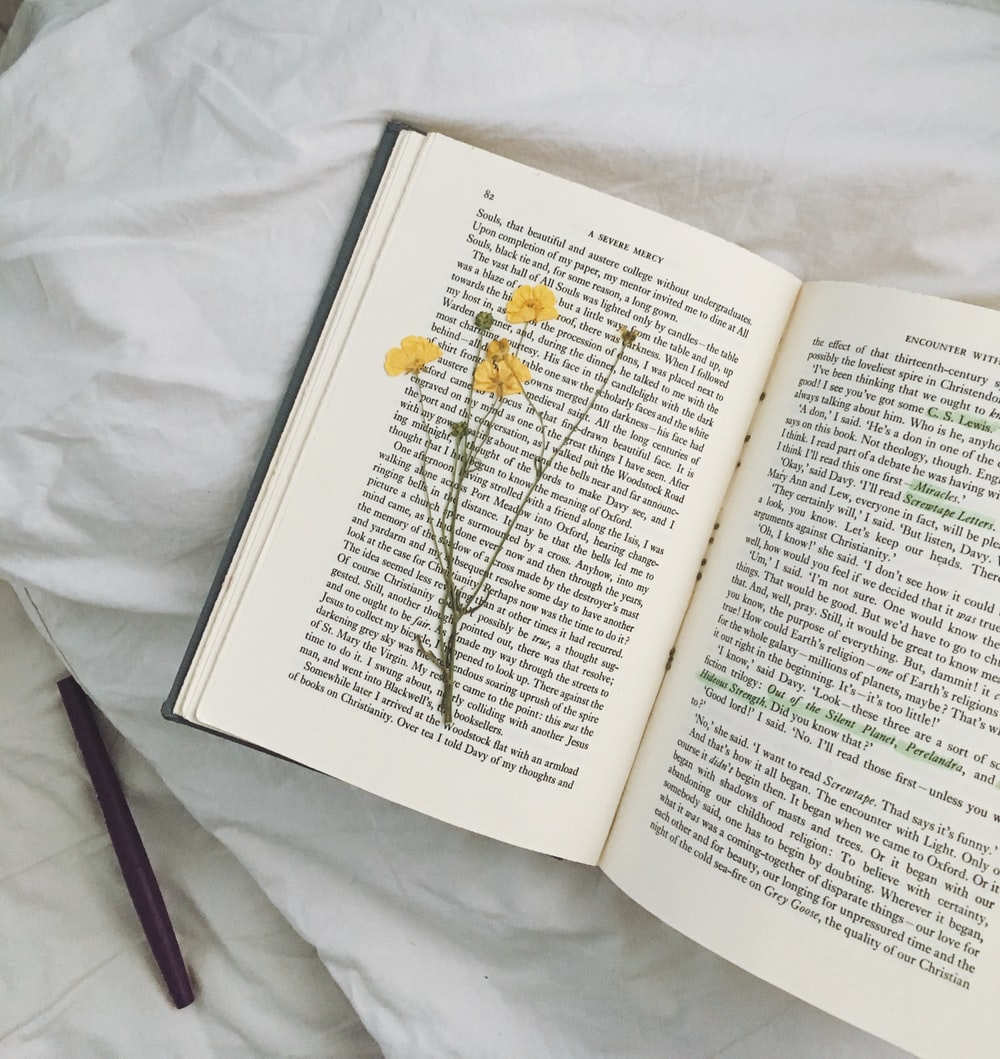 yellow flowers on open book