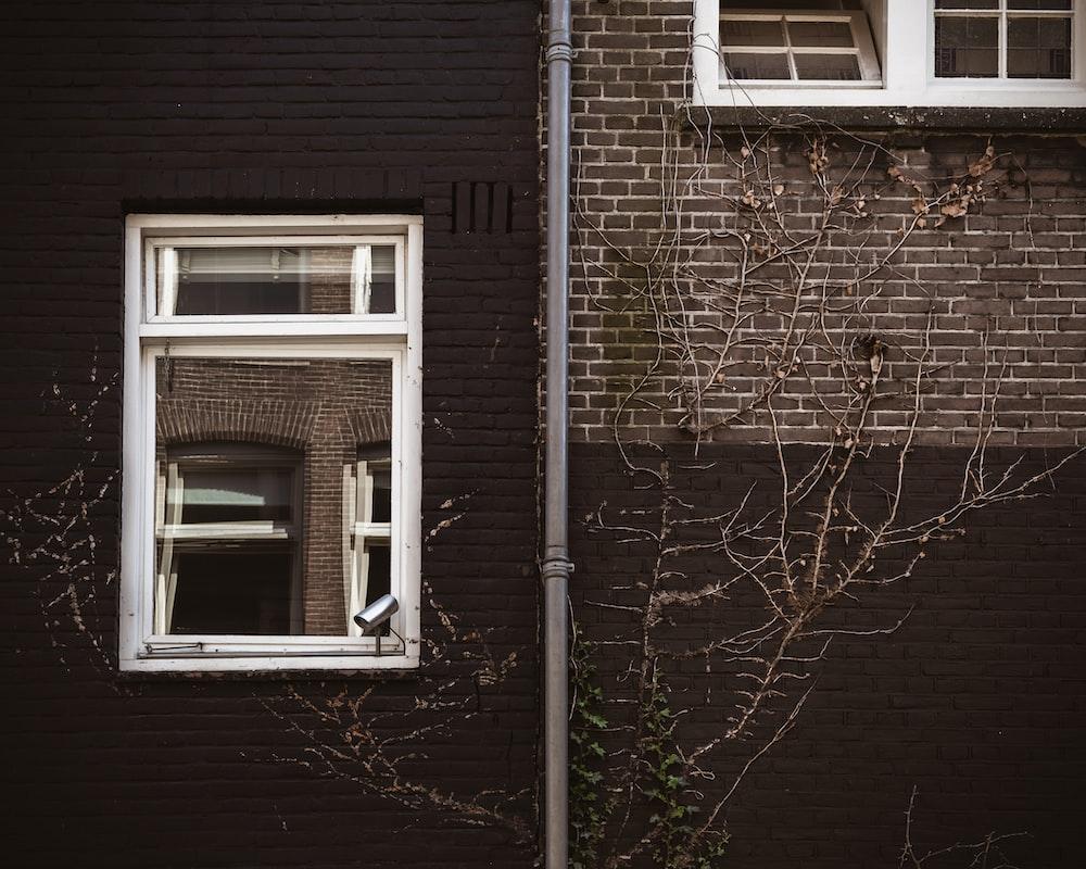 white wood-framed sash window