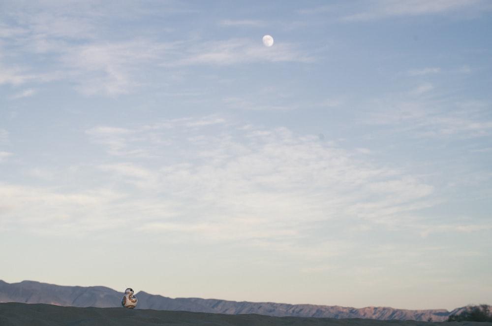 land under white sky during daytime