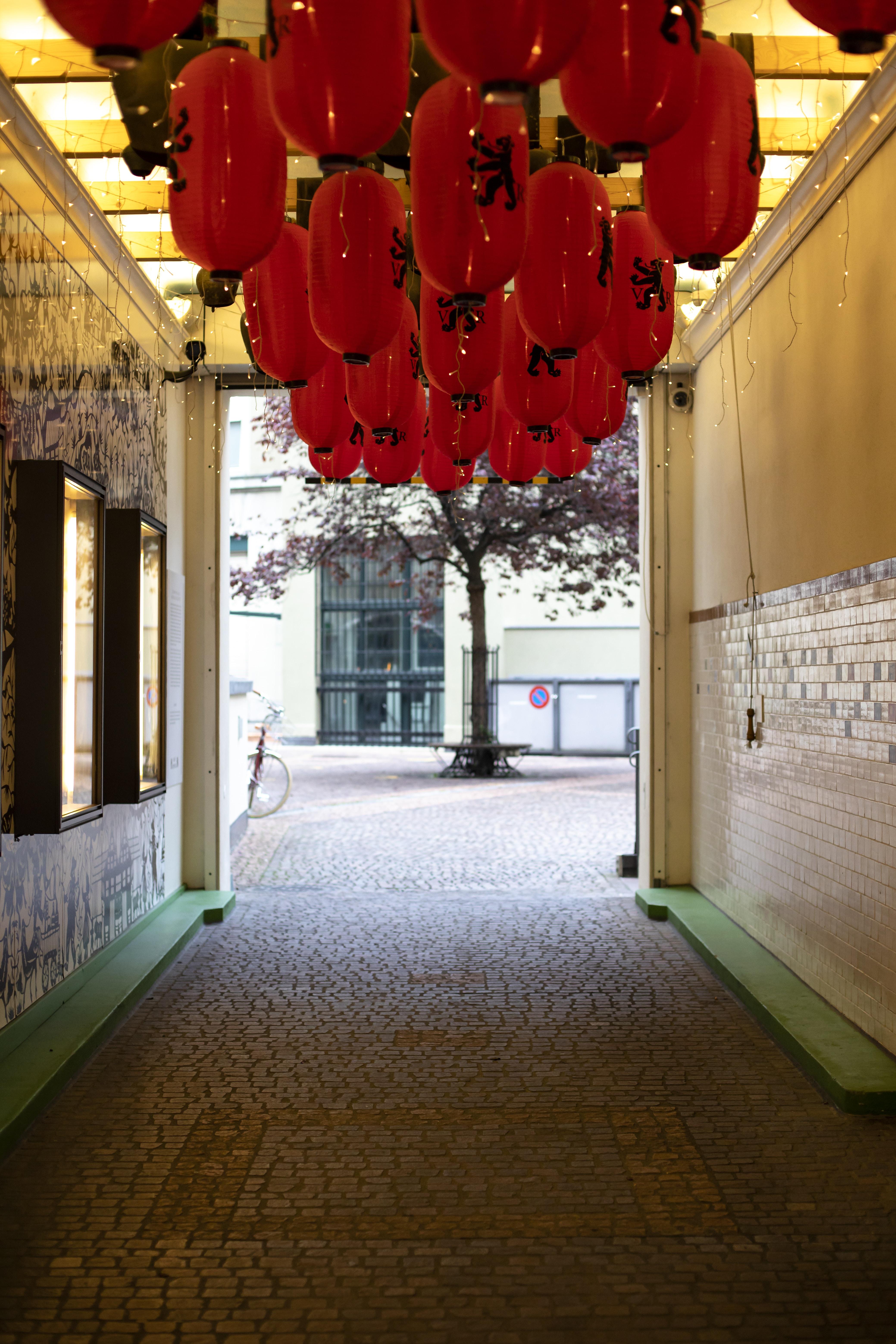 hanged red lantern lamps