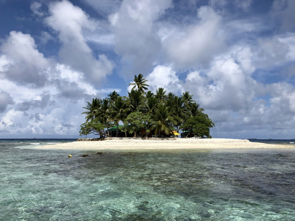 green trees on island