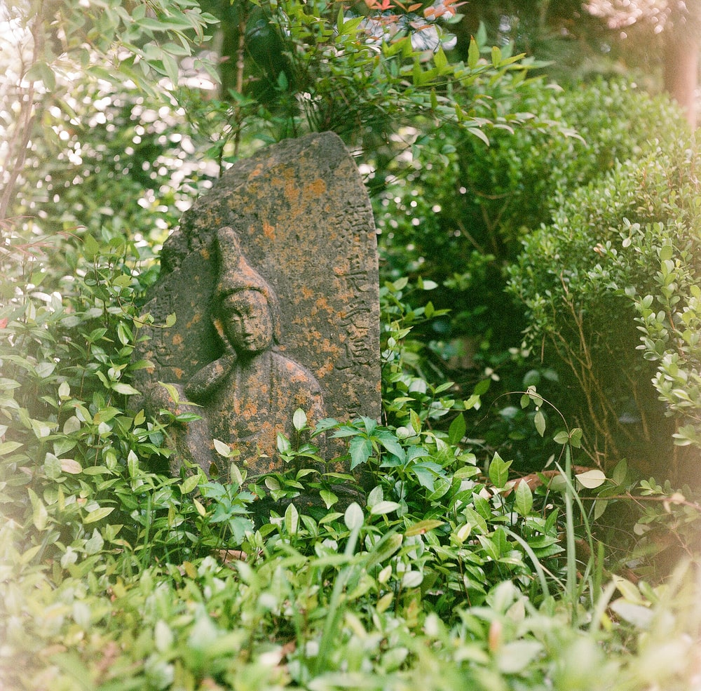 statue surrounded by plants