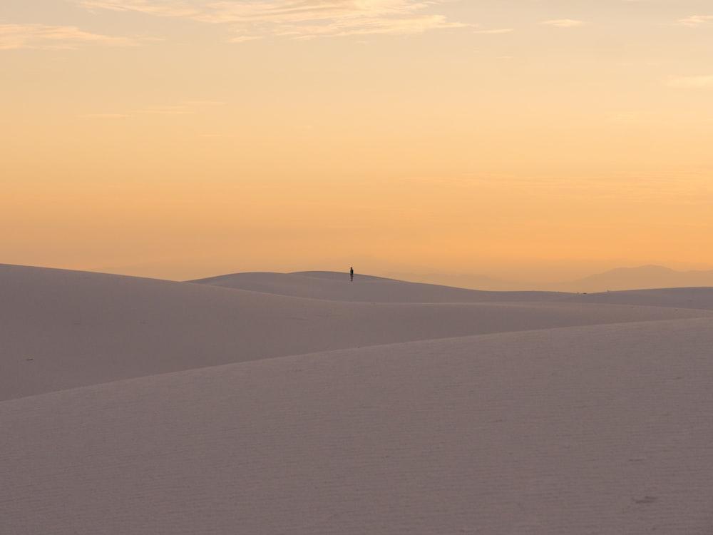 person standing on desert during golden hour