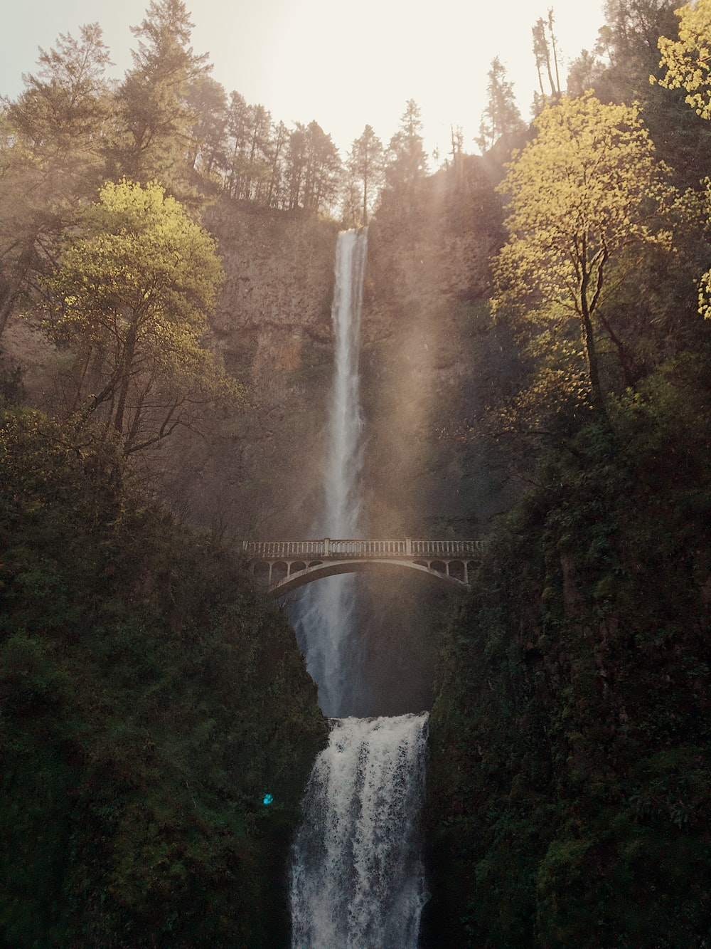 low-angle photography of water falls