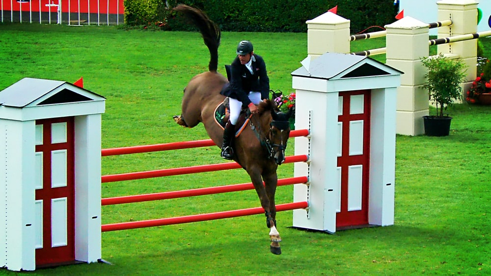 man riding horse jumping on red fence