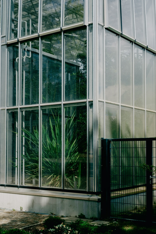 grey framed glass door in building