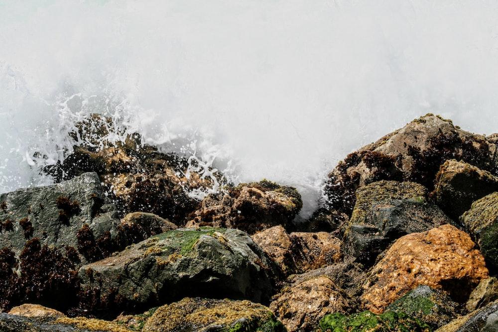 photo of an ocean wave on rocks