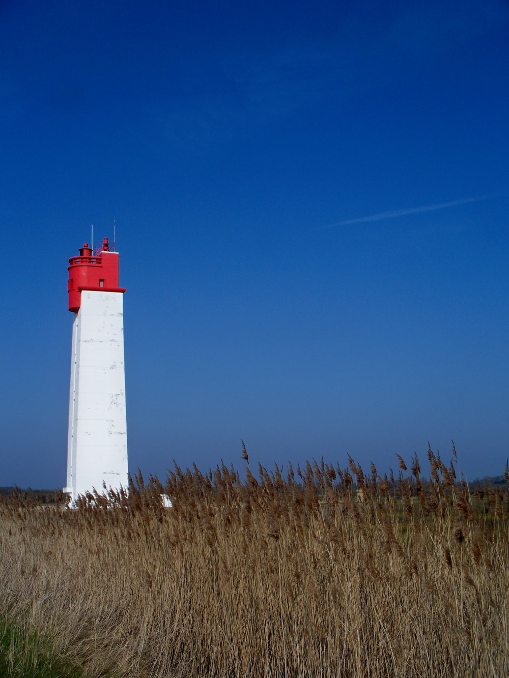 white and red lighthouse