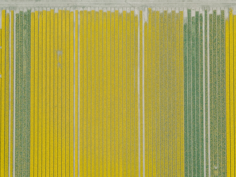 yellow and green textile