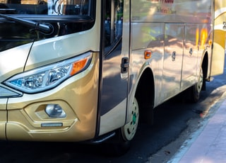 white and brown bus