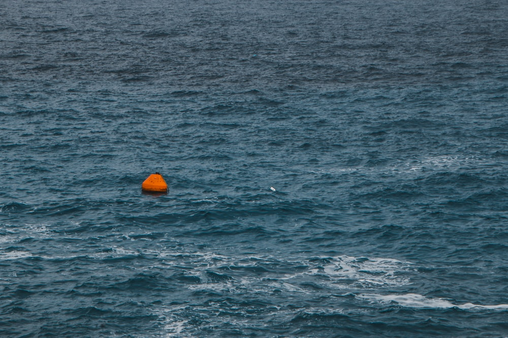 orange buoy in sea