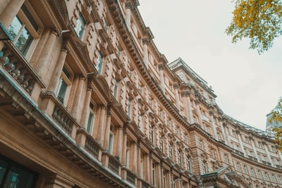 low-angle photo of brown curved building victorian zoom background