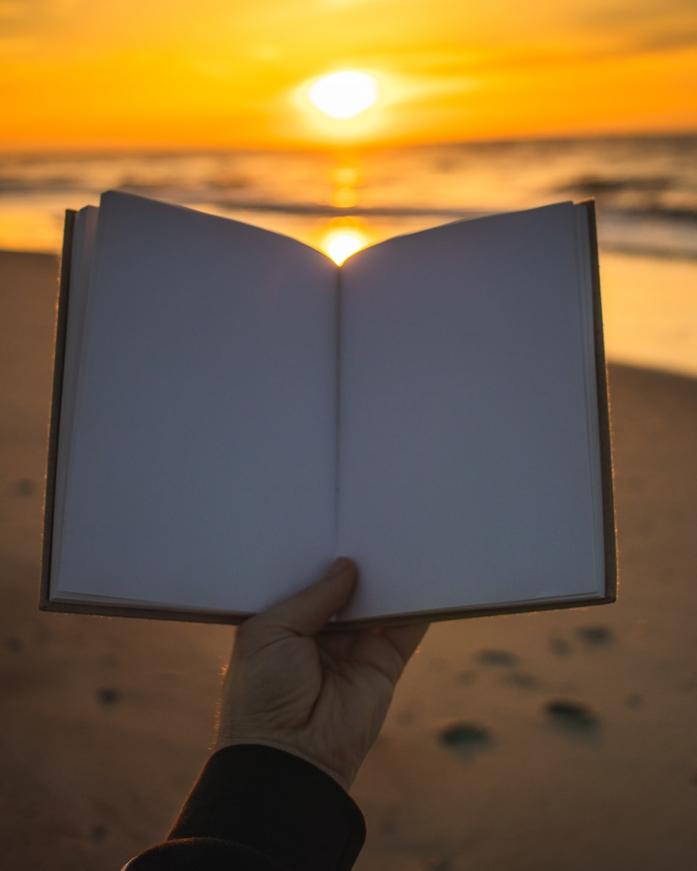 person holding open book with no print