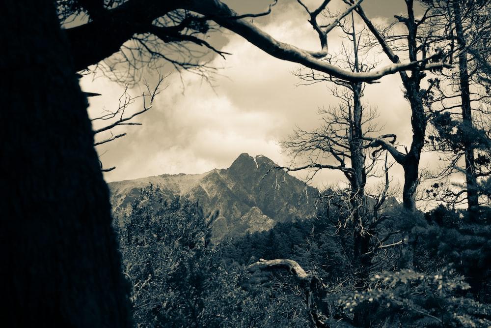 rocky mountain photography