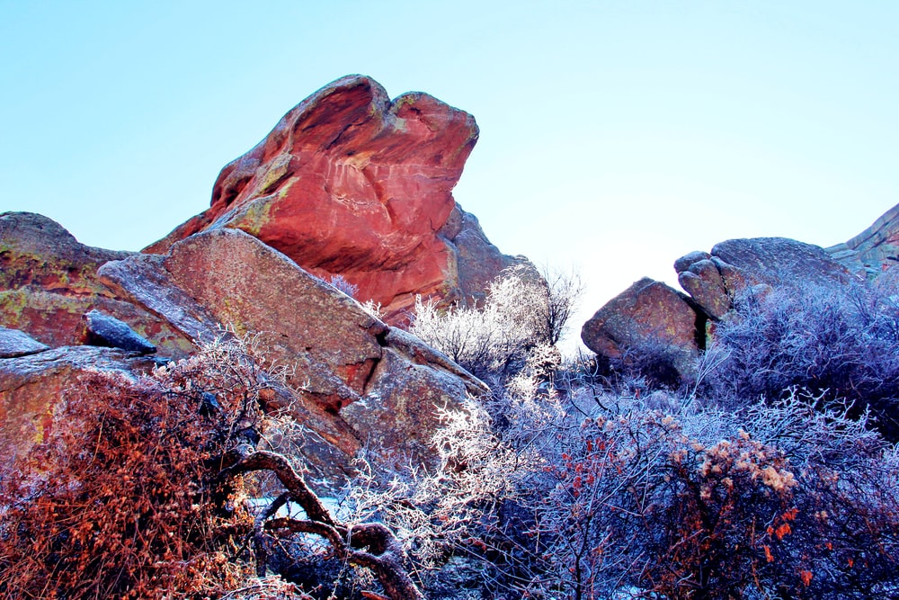 shallow focus photography of red and brown rock formation