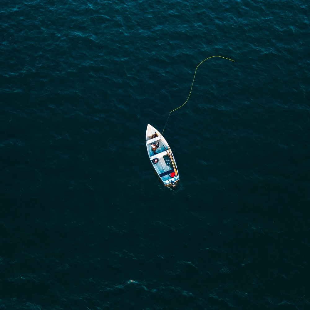 white and blue boat at sea