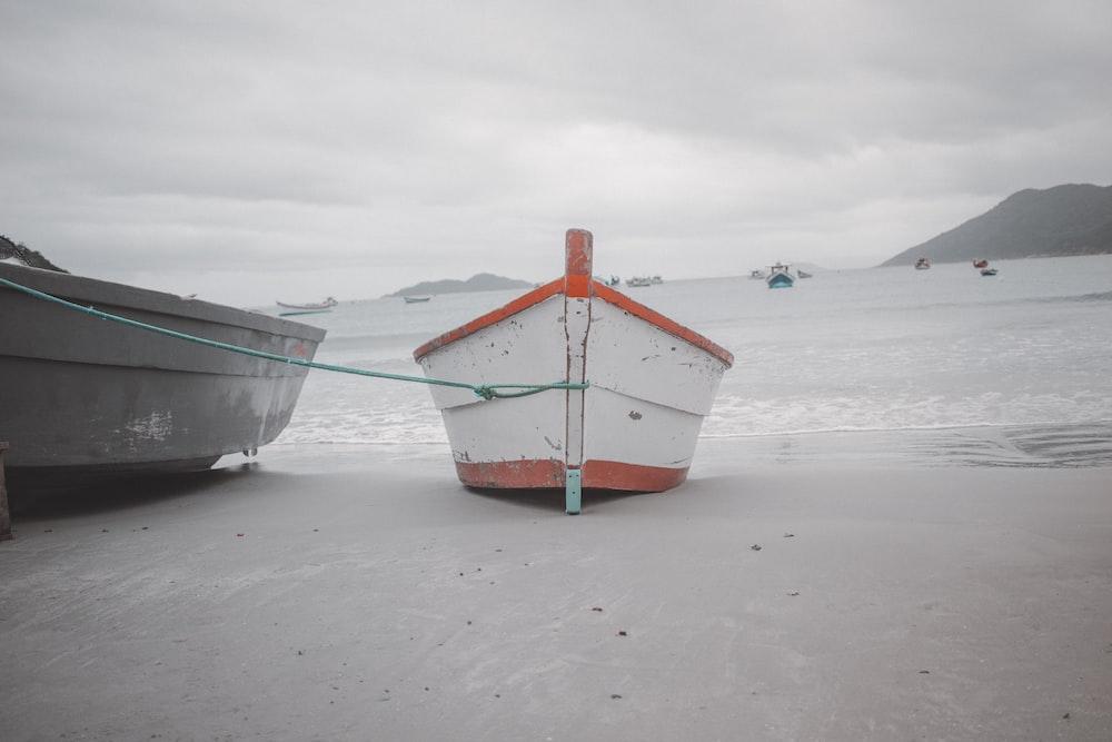 gray and white kayaks on seashore