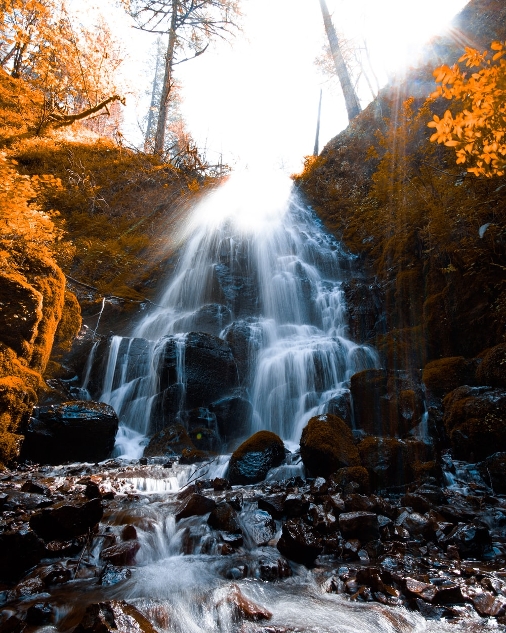 waterfall surrounded by trees during daytime