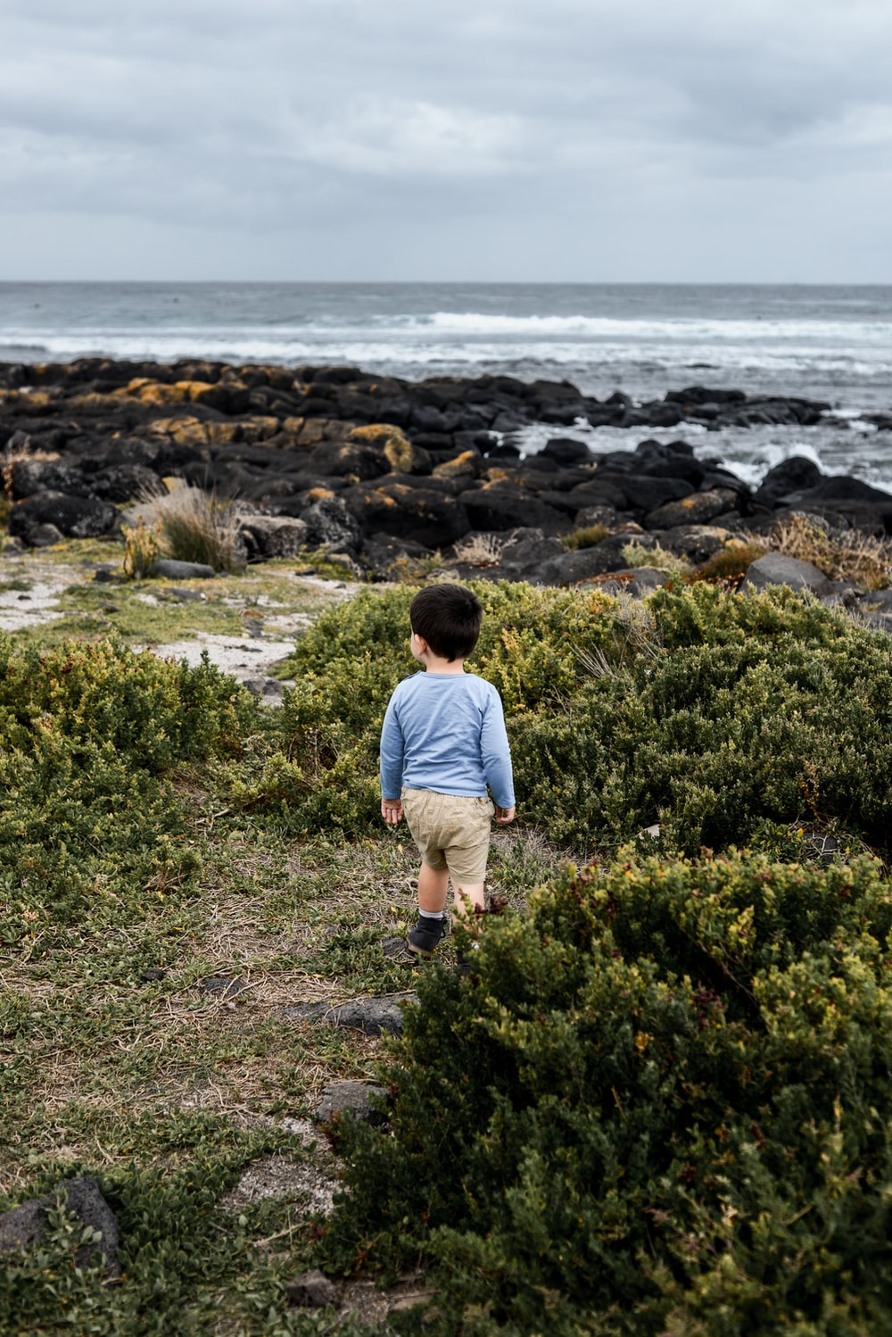 toddler standing on grass beside shrubs near the ocean