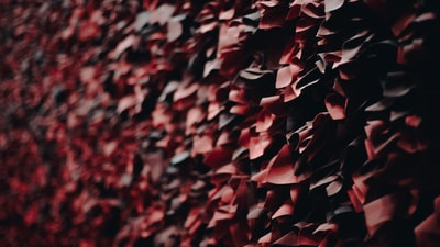 red and black wall close-up photo