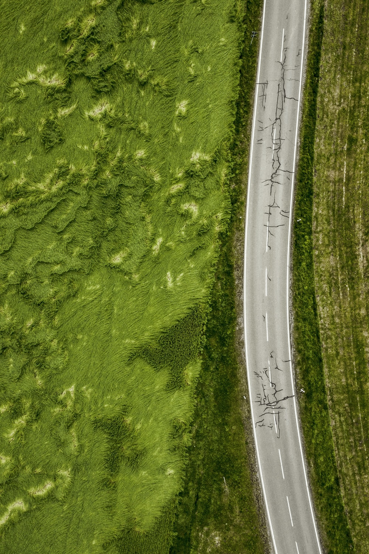 aerial photo of empty concrete road between plants
