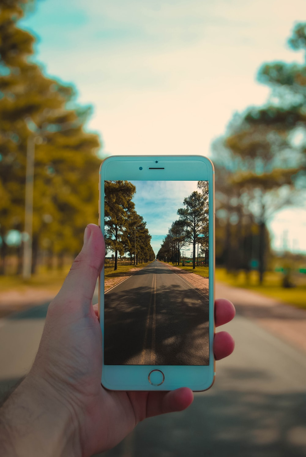 person taking photo of road using iPhone