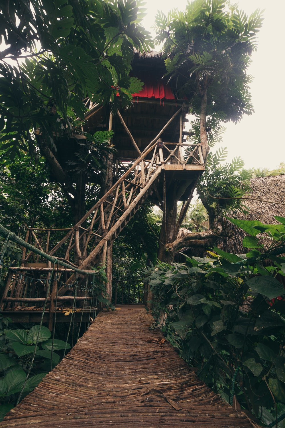 tree house during daytime
