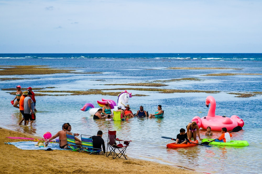 inflatable flamingo floating on blue beach