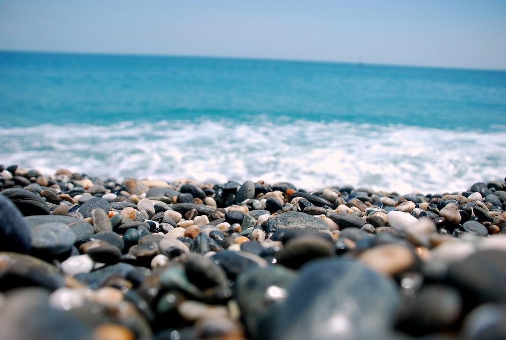 closeup photo of pebbles near sea
