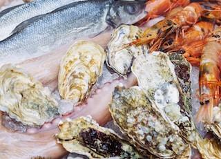 uncook sea foods