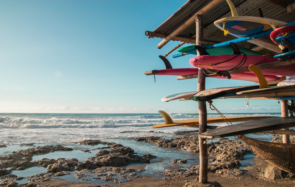 assorted-color surfboards