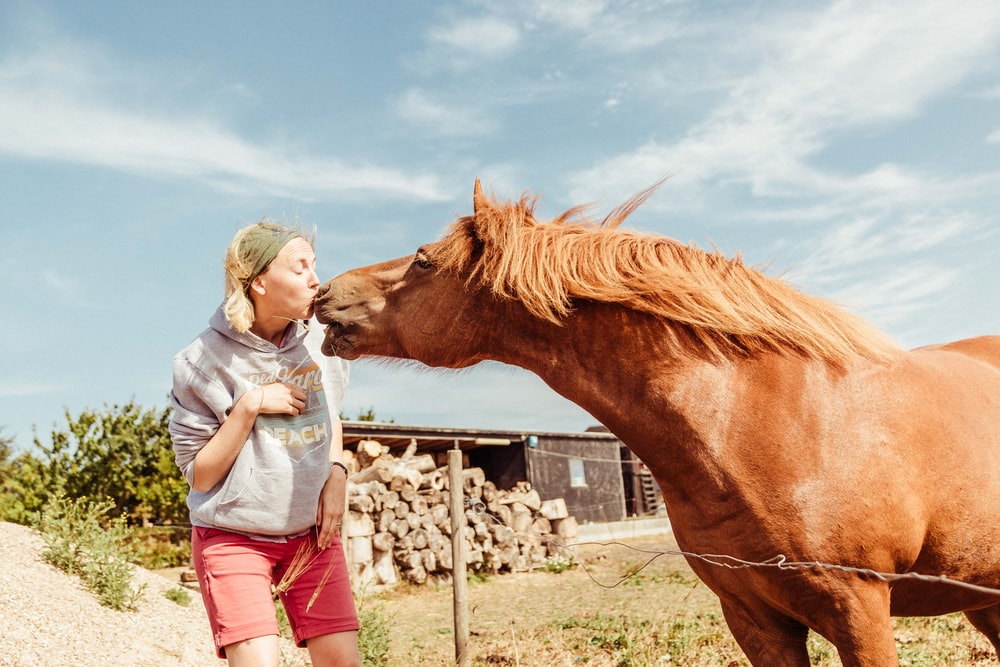woman kissing brown horse