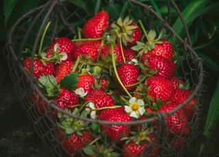 strawberries in metal basket