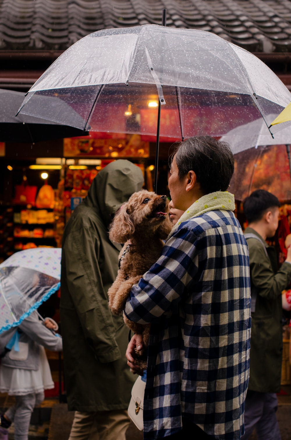 person holding a dog and umbrella during daytime