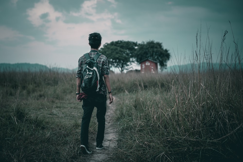 man walking on road in between grass field during daytime